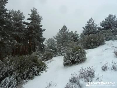 El Porrejón y Peña La Cabra; excursiones por madrid; ruta senderismo madrid;donde nace el rio jara